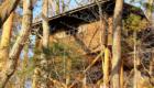 正丸峠ガーデンハウス構内通路から撮ったコテージの写真